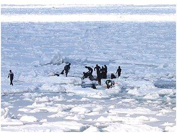 流氷ウオーク No,8 2003年2月号 著者:村石孝枝 写真:オホーツクドットコム