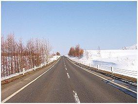 世界で一つだけの花 No,18 2004年1月号 知床四季のエッセイ 著者:村石孝枝 写真:オホーツクドットコム
