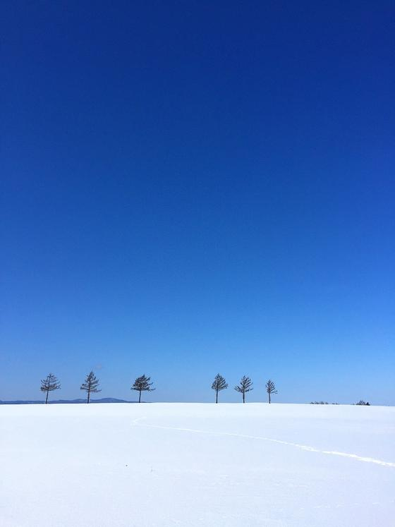 2020/2/27大空町女満別―メルヘンの丘