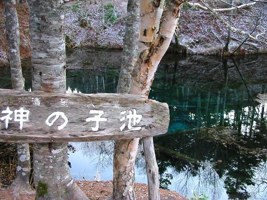 神の子池の四季 阿寒摩周国立公園