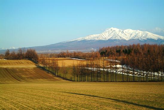 畑作地帯から見る「残雪の斜里岳」