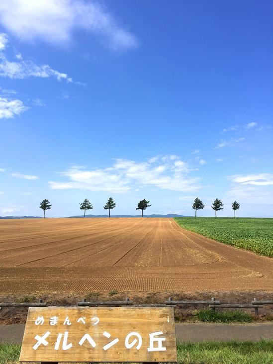 メルヘンの丘 収穫後の麦畑 大空町女満別