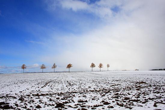 メルヘンの丘 初雪 大空町女満別