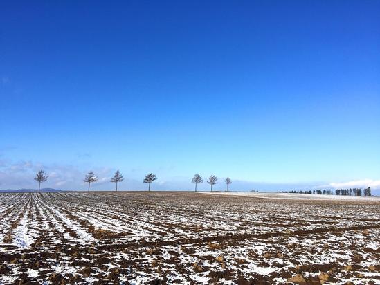 メルヘンの丘 根雪かな? 大空町女満