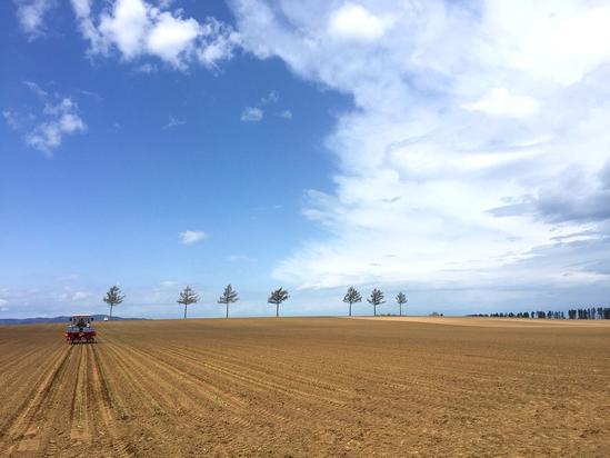 メルヘンの丘 農作業開始 北海道大空町女満別