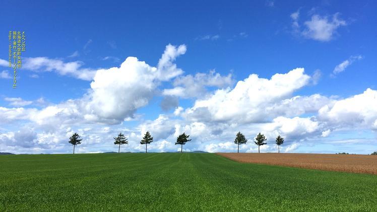 メルヘンの丘  収穫後の麦畑2 PC壁紙 北海道大空町女満別