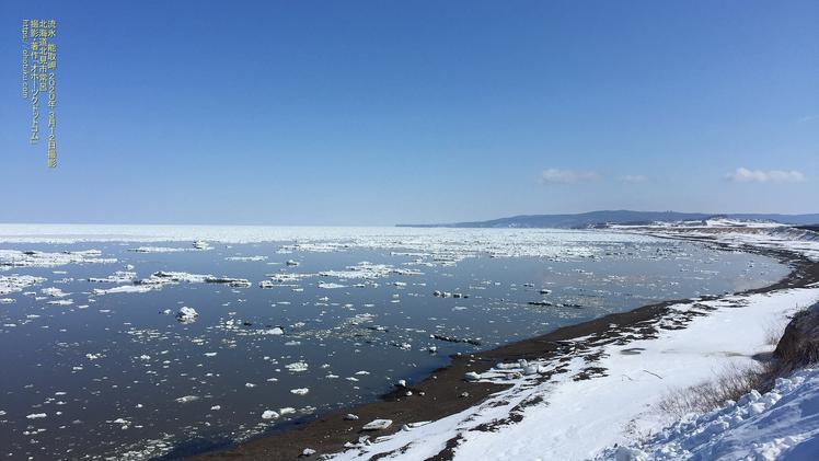 流氷接岸 海岸線から望む能取岬 PC壁紙 北海道北見市常呂
