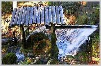 水苔の水車