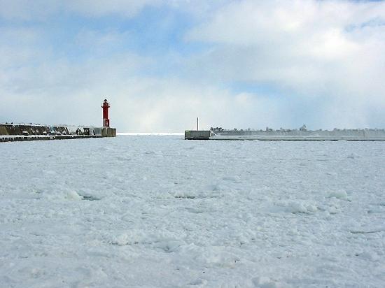 鱒浦漁港に入り込んだ流氷。